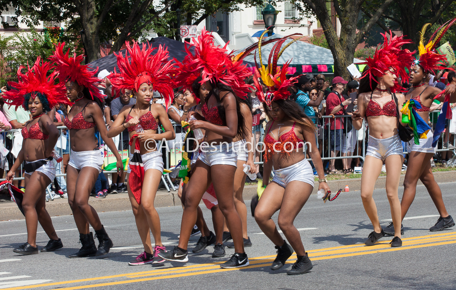 September 2016. Brooklyn, NYC – 49th West Indian Caribbean Carnival Parade.  Photo by ArtDesnudo.com