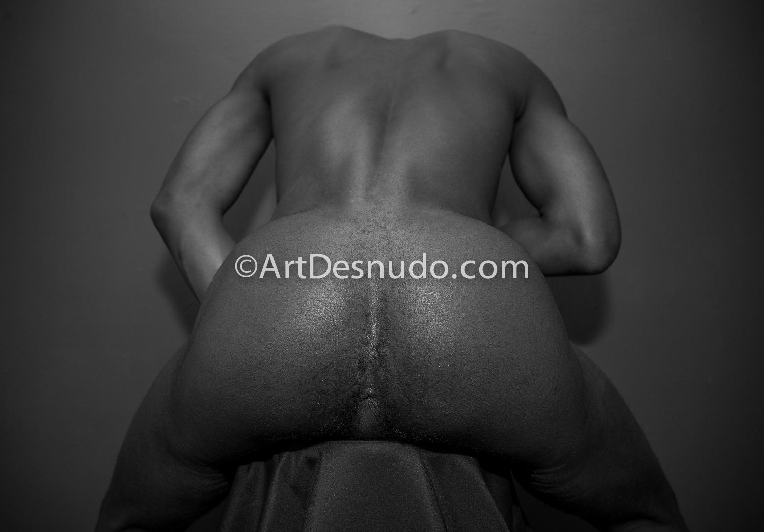 ArtDesnudo.com - Erotic nude photography in NYC (Brooklyn, Bronx, Staten Island, Queens, Manhattan).