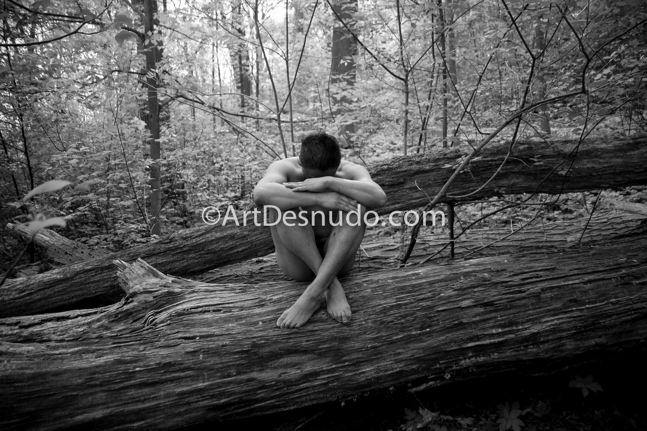 I created these nude photographs with a Latino model in 2011. Do you love Mother Nature? Do you love trees? Let's create nude photographs with trees in New York City. Send me a message. ArtDesnudo.com Creé estas fotografías de desnudos con un modelo Latino en el 2011. ¿Amas a la Madre Naturaleza? ¿Amas los árboles? Vamos a crear fotografías de desnudos con árboles en la ciudad de Nueva York. Envíame un mensaje. ArtDesnudo.com