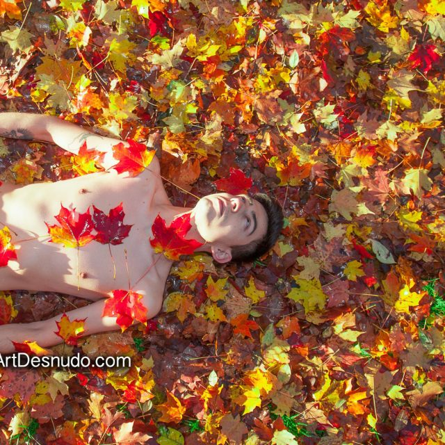 I love Autumn colors. Let's Create Art with your Body and Mother Nature! Model: Ivan.